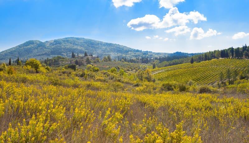 итальянский ландшафт сельский стоковые фотографии rf