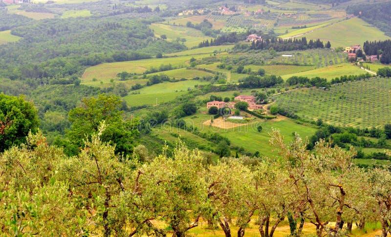 Итальянский зеленый ландшафт в Тоскане, Италии стоковое изображение rf