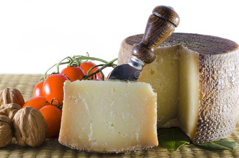 Итальянский сыр овец стоковое фото rf