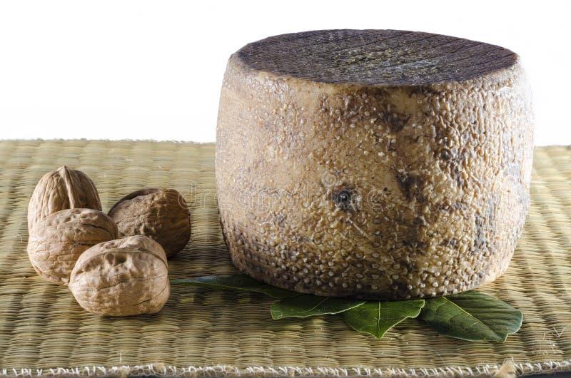 Итальянский сыр овец стоковая фотография rf