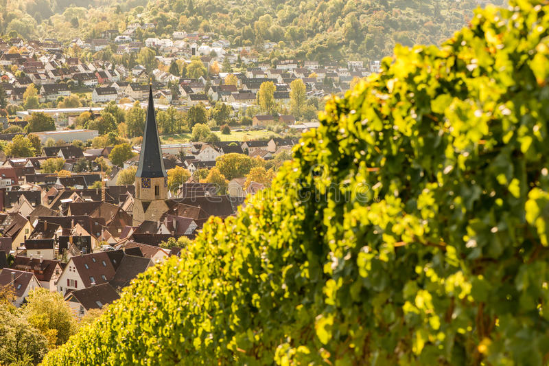 Ищите от виноградника на немецкой деревне Geradstetten стоковое изображение