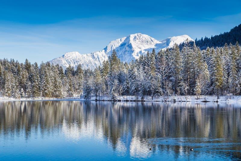 Идилличная страна чудес зимы с озером горы в Альпах стоковая фотография rf