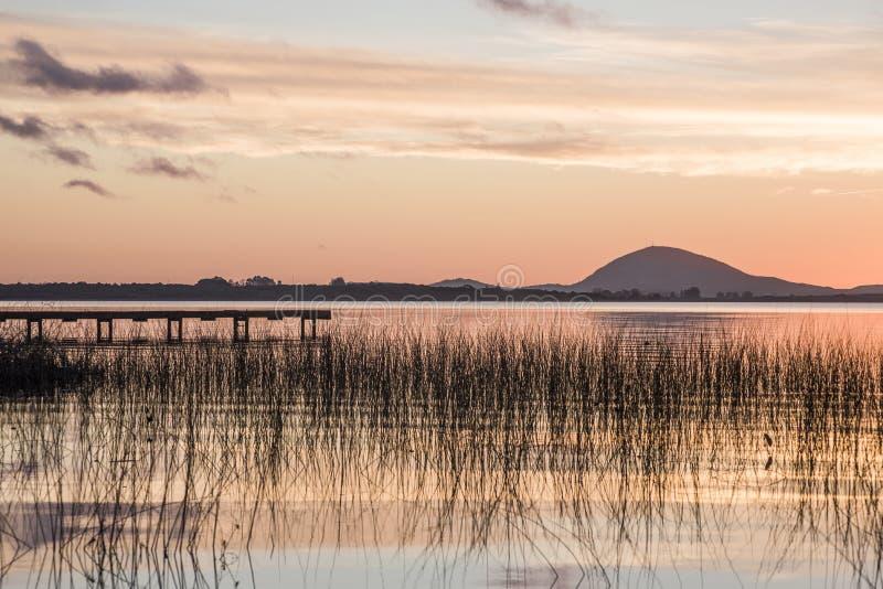 Идилличное озеро верб, отдел Maldonado Уругвая стоковая фотография rf