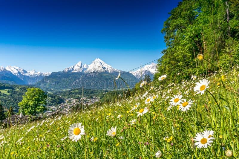 Идилличный ландшафт в Альпах в весеннем времени стоковые фото