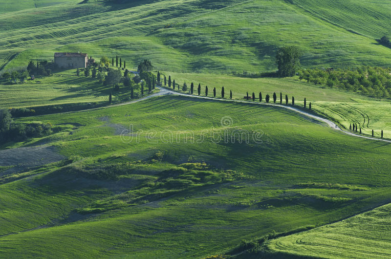Идилличный ландшафт Тосканы стоковое фото