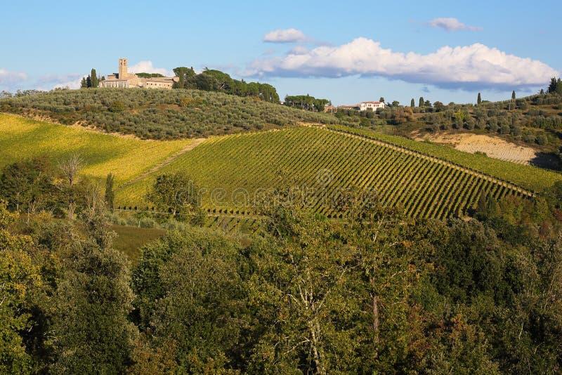 Идилличный ландшафт Тосканы стоковые изображения