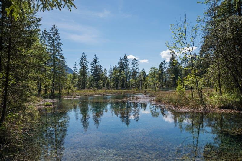 Идилличный пруд с отражением воды - естественным fount стоковые фотографии rf
