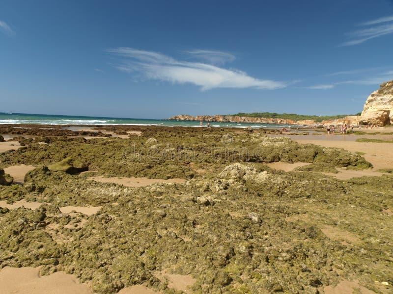 Идилличный пляж Прая de Rocha на области Алгарве. стоковое фото
