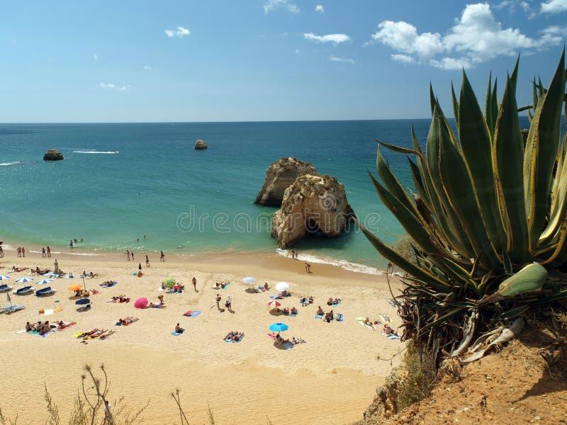 Идилличный пляж Прая de Rocha на области Алгарве. стоковая фотография rf
