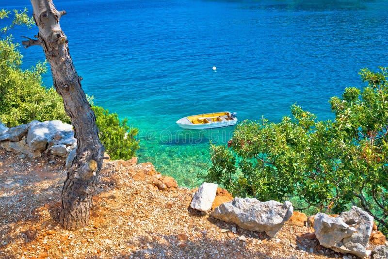 Идилличный пляж сосны в Хорватии стоковые фото