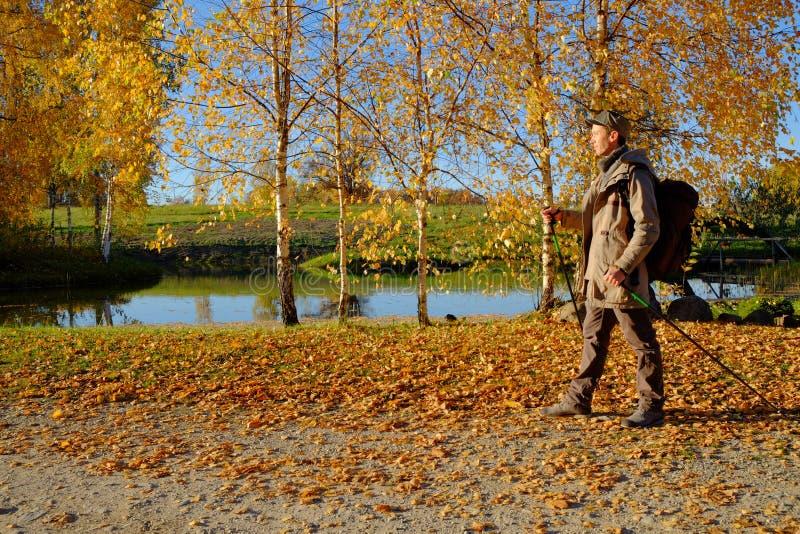 Идти в осень стоковое изображение