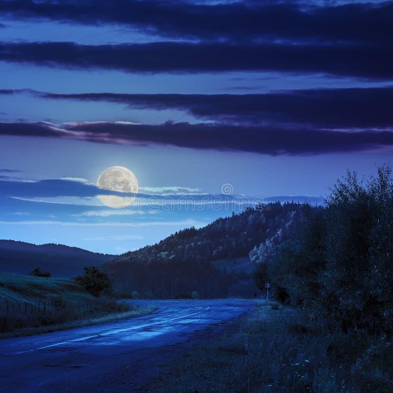 Идти к природе на ноче стоковое фото