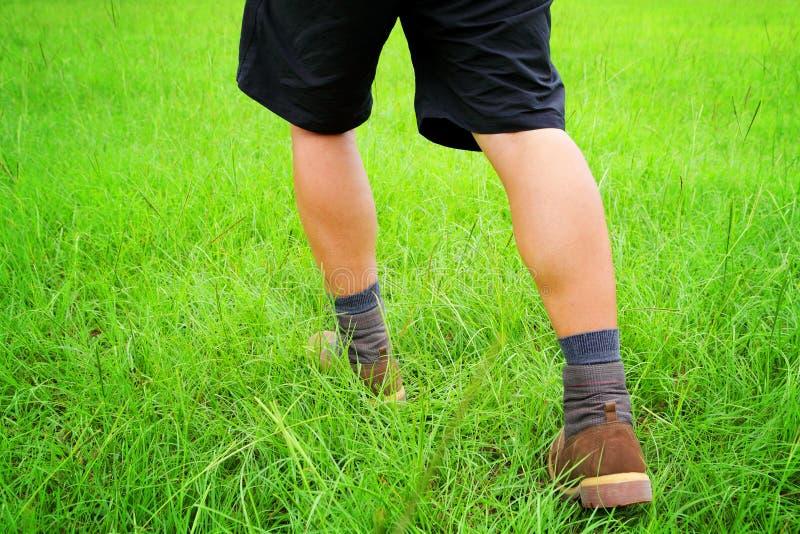 Download Идти человека стоковое изображение. изображение насчитывающей прогулка - 33737889