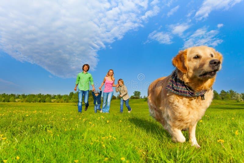 Идущая собака перед счастливой семьей стоковое изображение rf