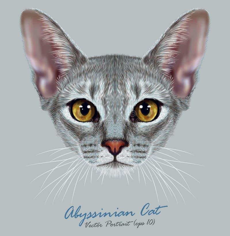 Иллюстративный портрет абиссинского кота иллюстрация вектора