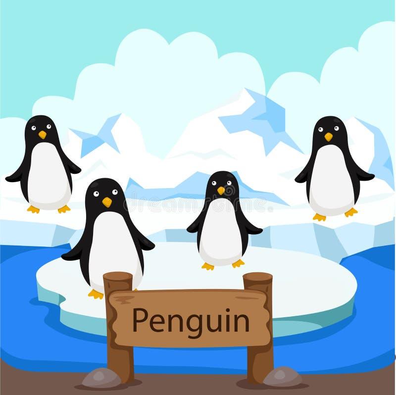 Иллюстратор пингвина в зоопарке иллюстрация вектора