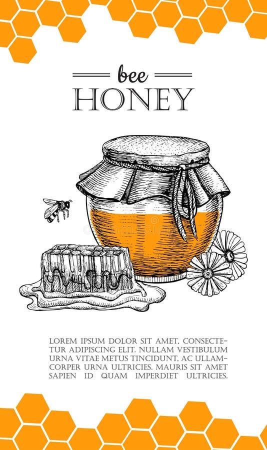 Иллюстрации пчелы меда вектора нарисованные рукой Знамя меда, плакат иллюстрация вектора