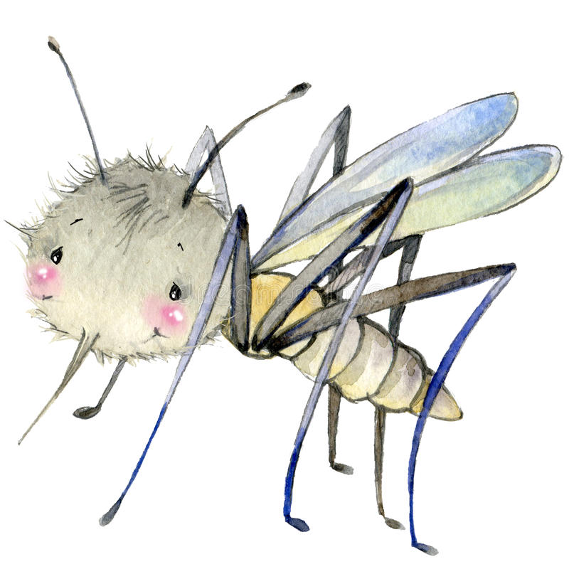 Иллюстрация акварели москита насекомого шаржа иллюстрация штока