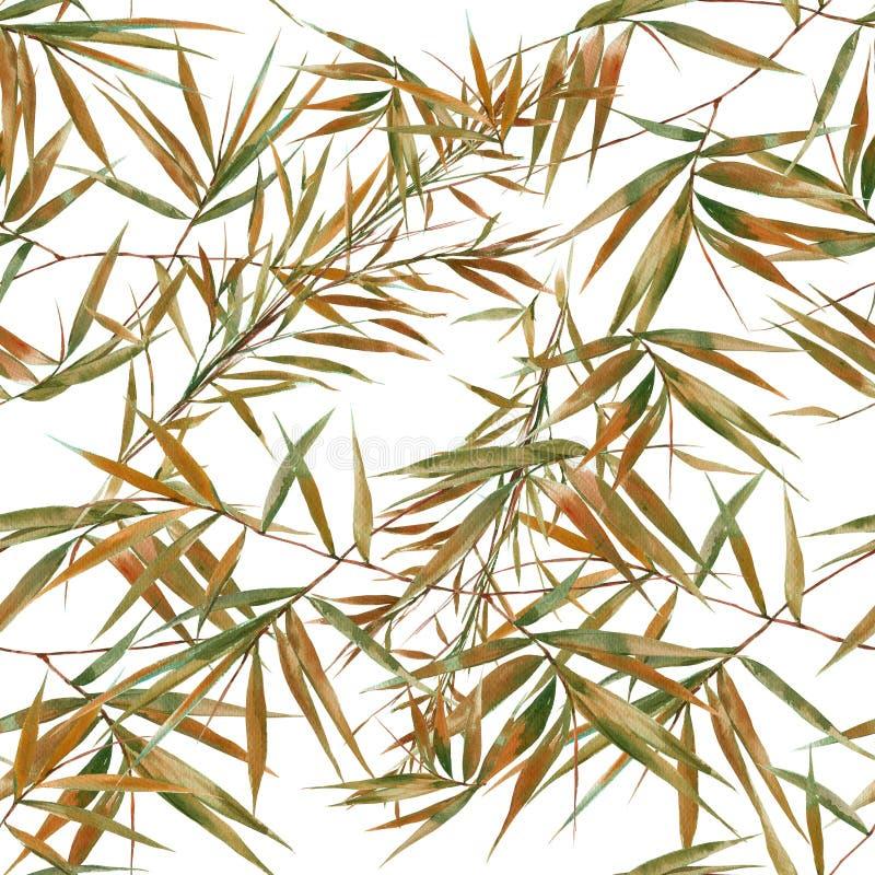 Иллюстрация бамбуковых листьев, картина акварели на белой предпосылке иллюстрация штока