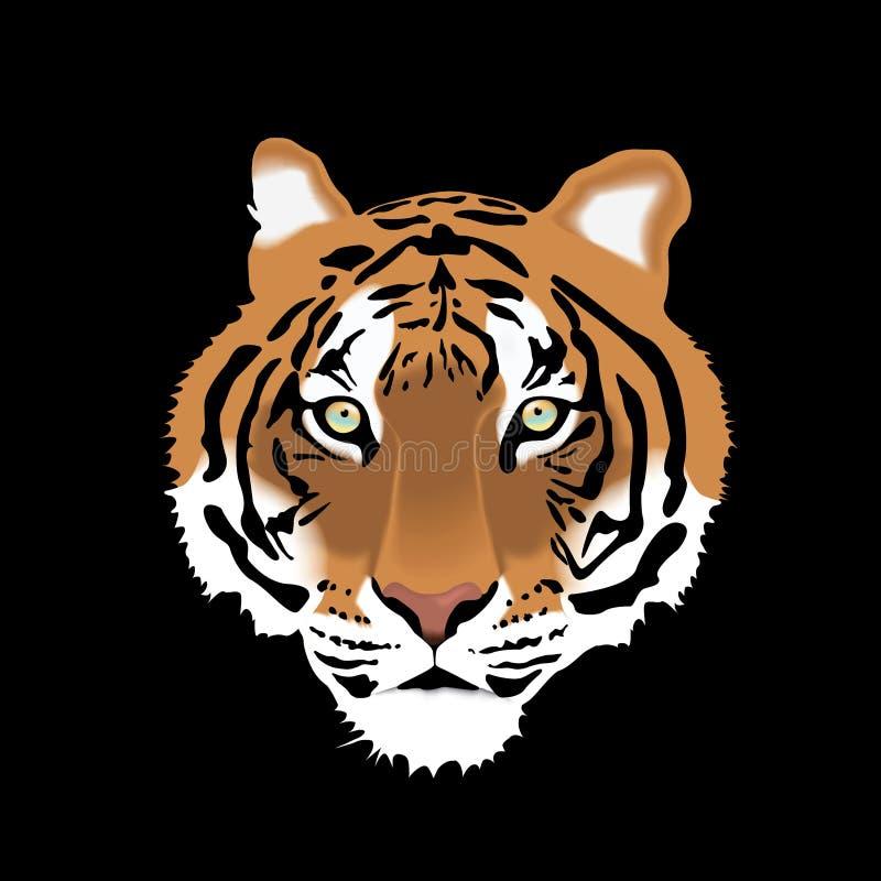 Иллюстрация вектора головы тигра стоковые фото
