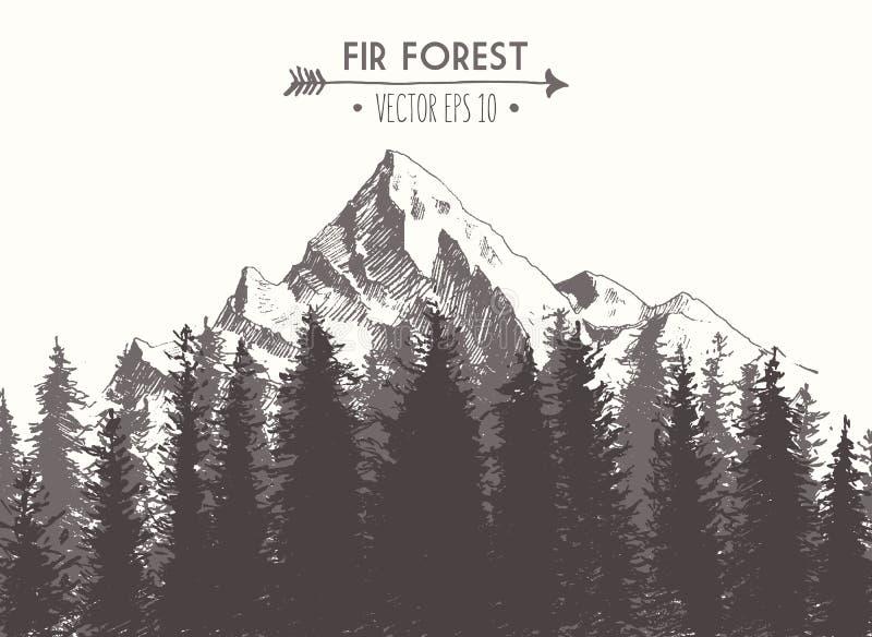 Иллюстрация вектора леса ели нарисованная горой бесплатная иллюстрация