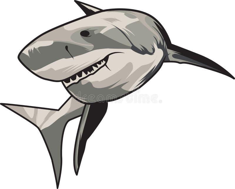 Иллюстрация вектора: зубастая белая акула бесплатная иллюстрация