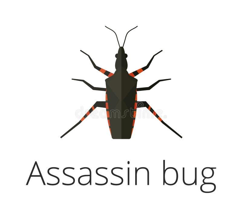Иллюстрация вектора насекомого черепашки убийцы иллюстрация штока