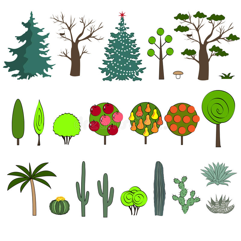 Иллюстрация вектора различного вида дерева иллюстрация вектора