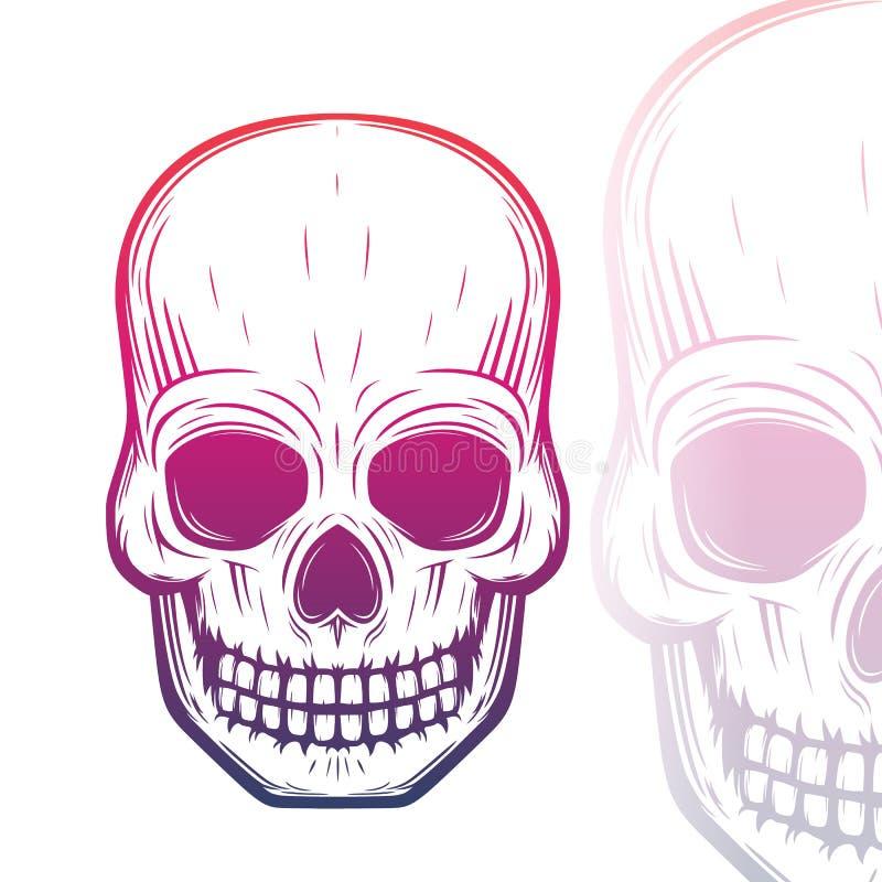 Иллюстрация вектора черепа на белизне иллюстрация вектора