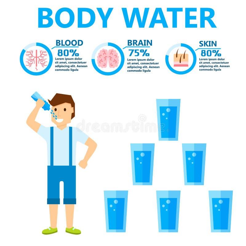 Иллюстрация вектора infochart брошюры концепции образа жизни диеты людей здоровья infographics питья воды тела иллюстрация штока