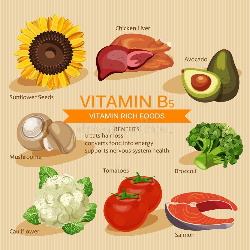 Иллюстрация еды витаминов и минералов Комплект вектора еды богачей витамина Витамин B5 Брокколи, куриная печень, авокадо, sunflow иллюстрация вектора