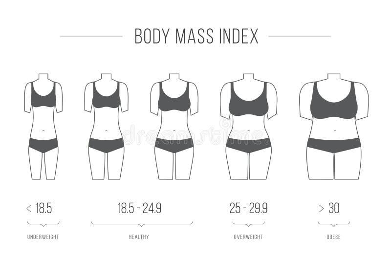 Иллюстрация индекса массы тела, женская диаграмма бесплатная иллюстрация