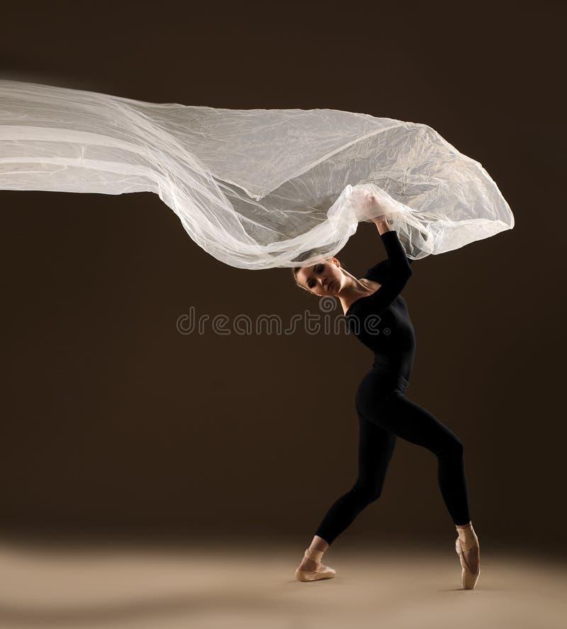 иллюстрация конструкции танцора балета красивейшая стоковая фотография rf
