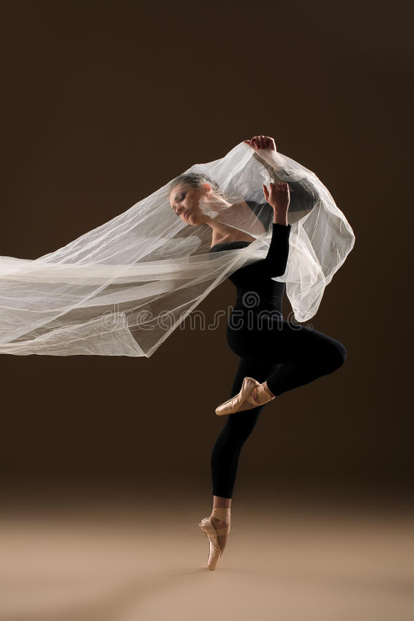 иллюстрация конструкции танцора балета красивейшая стоковые фото