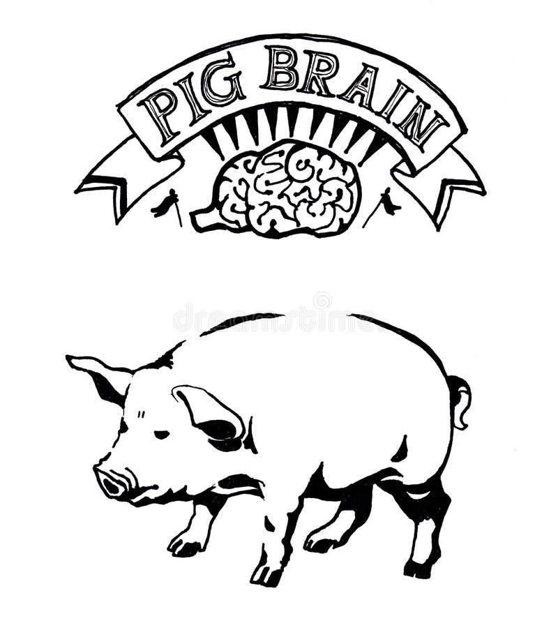 Иллюстрация мозга свиньи нарисованная рукой Искусство и схематическая метафора иллюстрация вектора