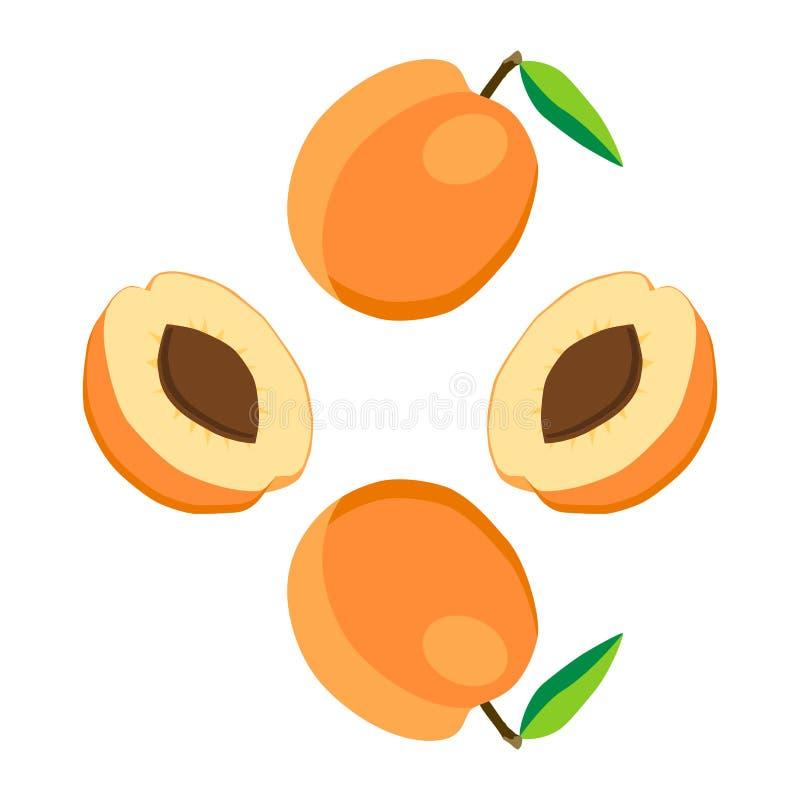 Иллюстрация на теме абрикоса плодоовощ, рынка ярлыка бесплатная иллюстрация