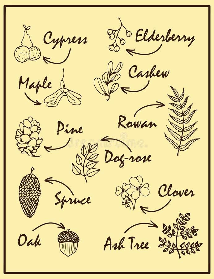 Иллюстрация природы по мере того как учредительство творения большое делает материалы естественным такое к деревянной работе рабо иллюстрация вектора