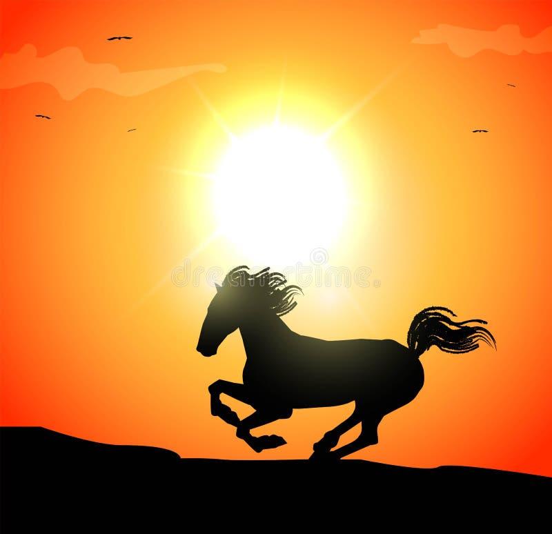 Иллюстрация скакать лошадь в заходе солнца иллюстрация вектора