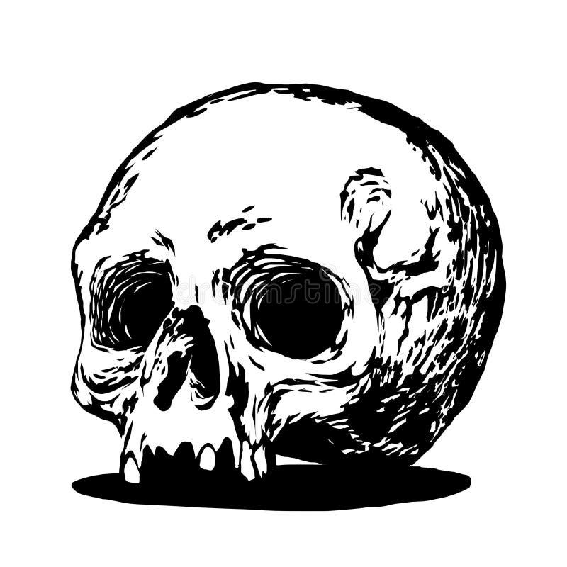 Иллюстрация черепа стоковая фотография rf
