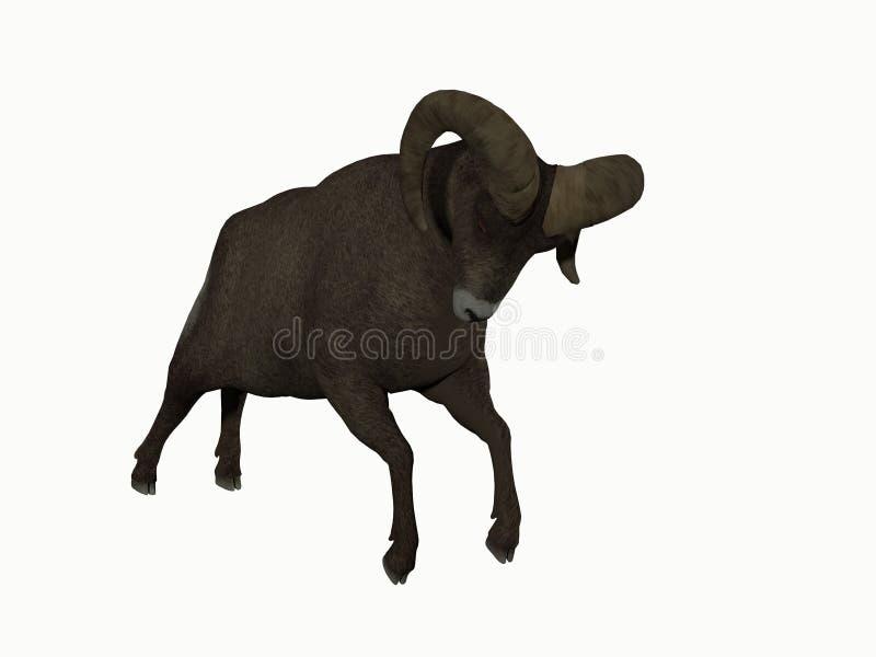 Иллюстрация Ram стоковые фото