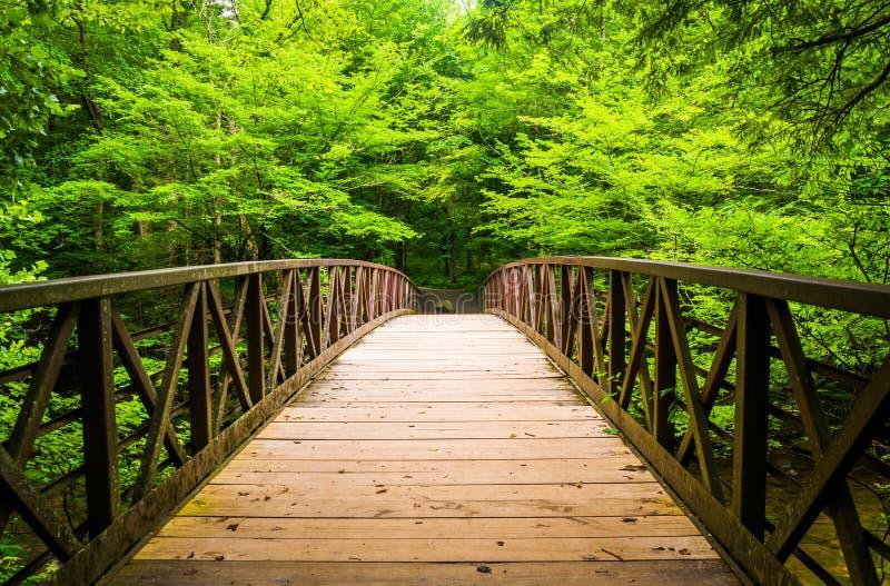 Идя мост над потоком, на больших закоптелых горах национальных стоковые фото