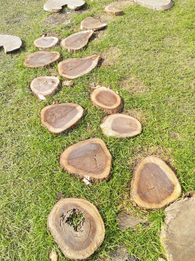Идя шаги в спортивную площадку деревянными пнями стоковые изображения