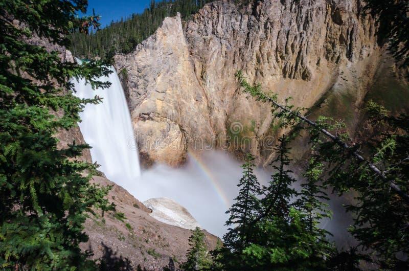 Йеллоустон понижается водопад как увидено от следа дядюшки Том с небольшой радугой на солнечный день стоковые изображения rf
