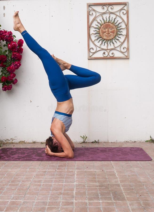 Йога в саде стоковое изображение rf