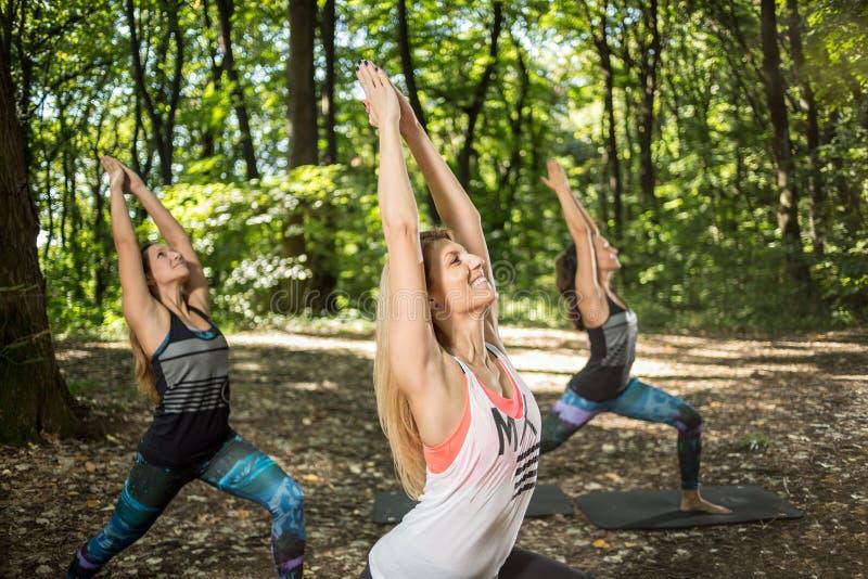 Йога группы фитнеса практикуя снаружи стоковые фото