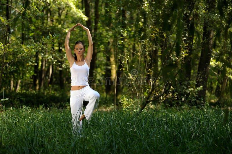 Йога женщины практикуя в древесине стоковые фотографии rf