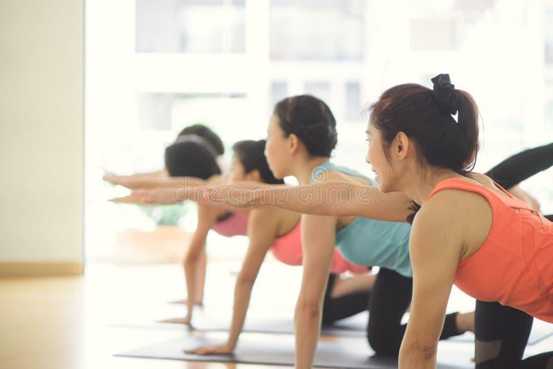 Йога молодых женщин внутри помещения держит затишье и размышляет пока практикующ йогу для того чтобы исследовать внутренний мир стоковая фотография