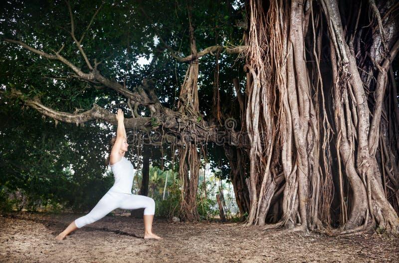 Йога около баньяна стоковое изображение