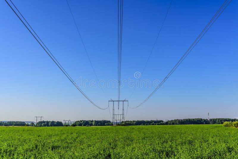 Кабели высоковольтной линии электропередач и поддержек над зеленым полем в утре раннего лета стоковое изображение