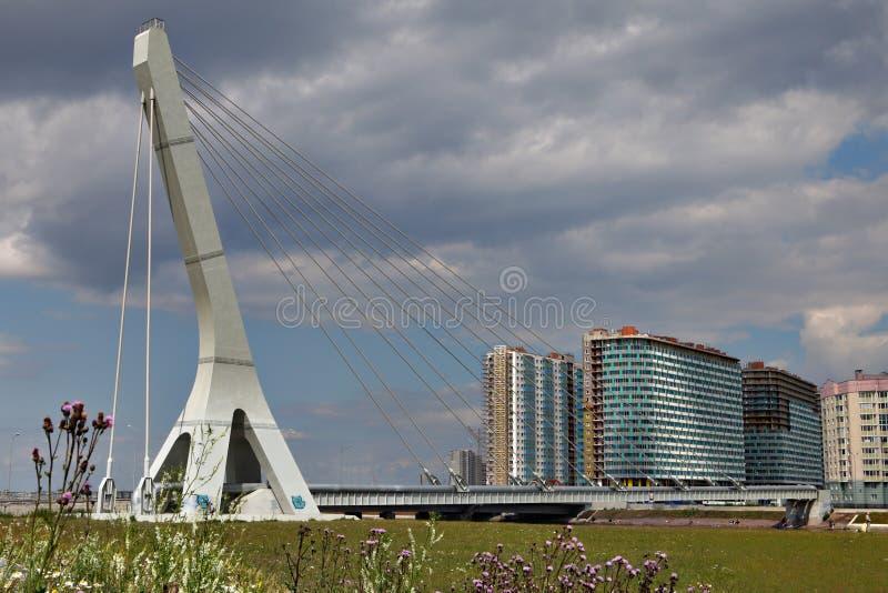 Кабел-остали мост трубы пара стоковое изображение rf
